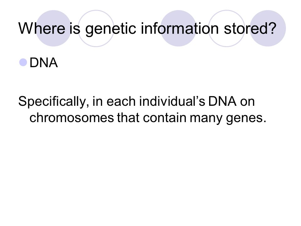 Where is genetic information stored
