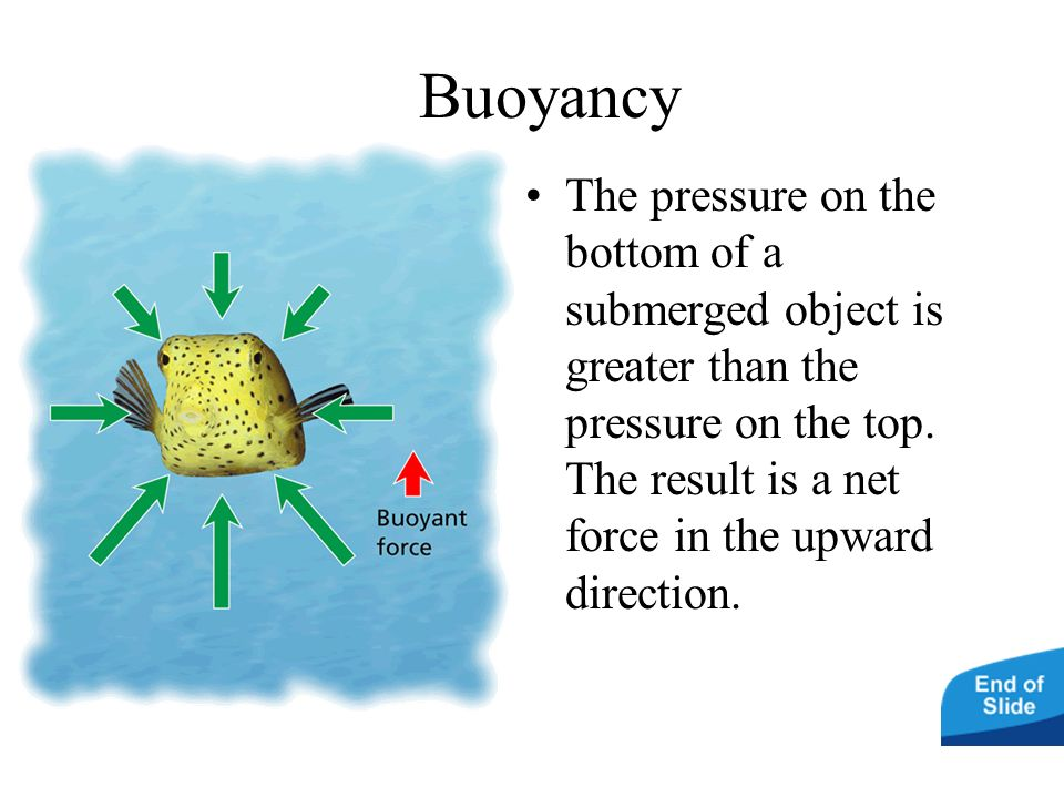 BuoyancyThe pressure on the bottom of a submerged object is greater than the pressure on the top.