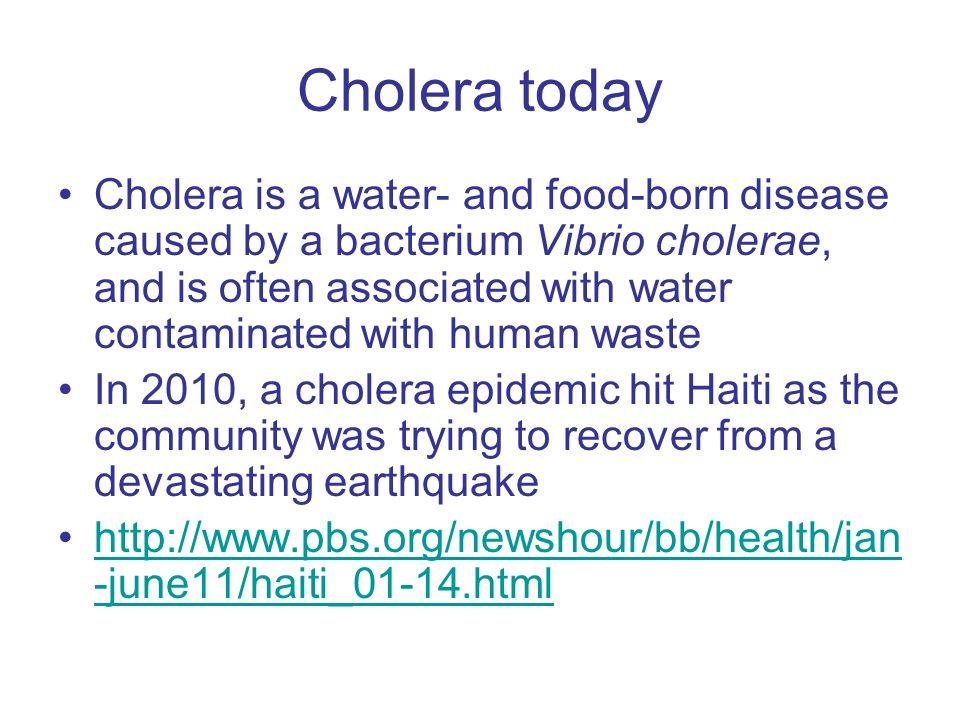 Cholera today