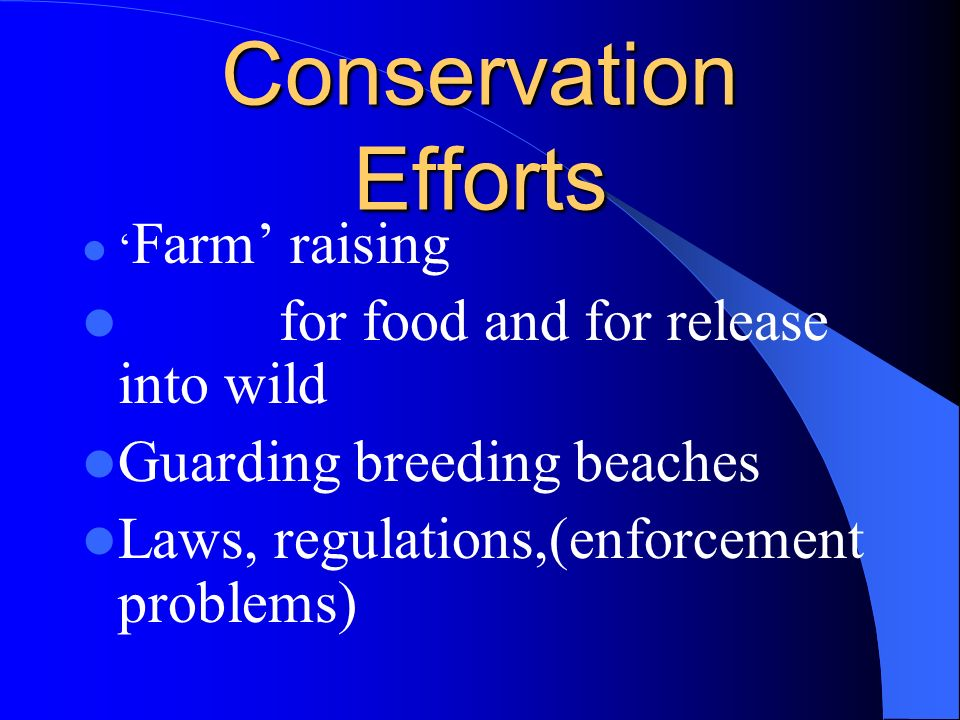 Conservation Efforts for food and for release into wild