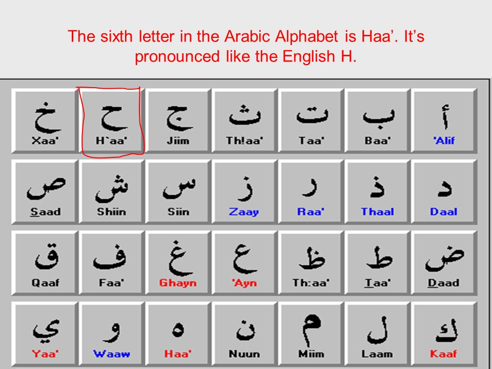 The sixth letter in the Arabic Alphabet is Haa'