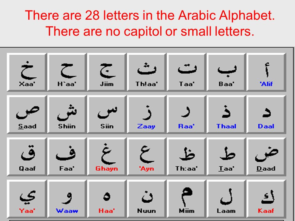 There are 28 letters in the Arabic Alphabet