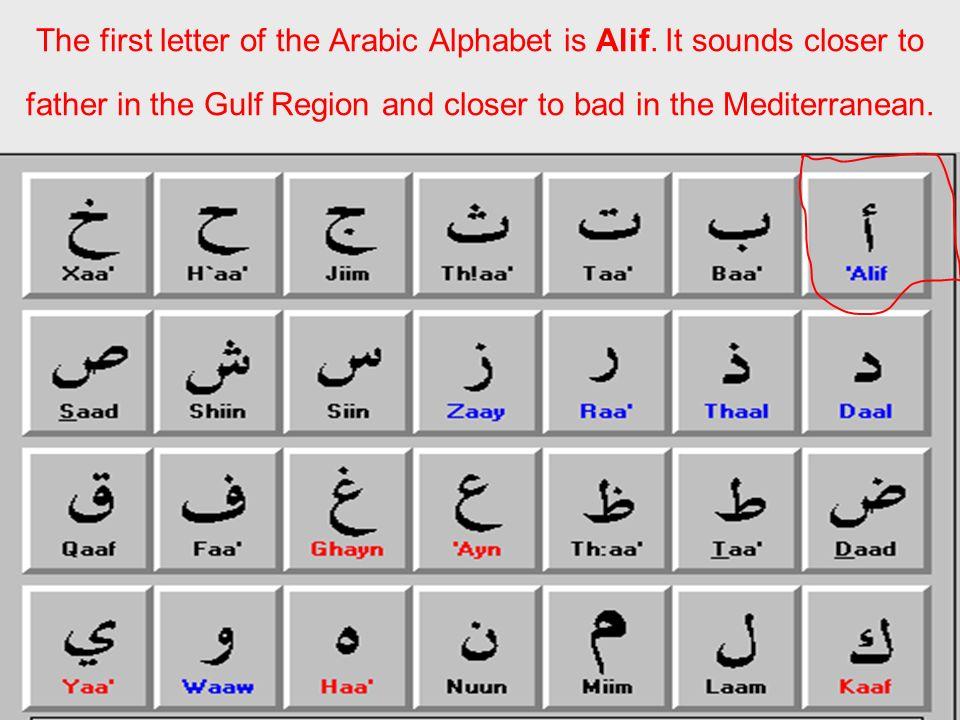 The first letter of the Arabic Alphabet is Alif