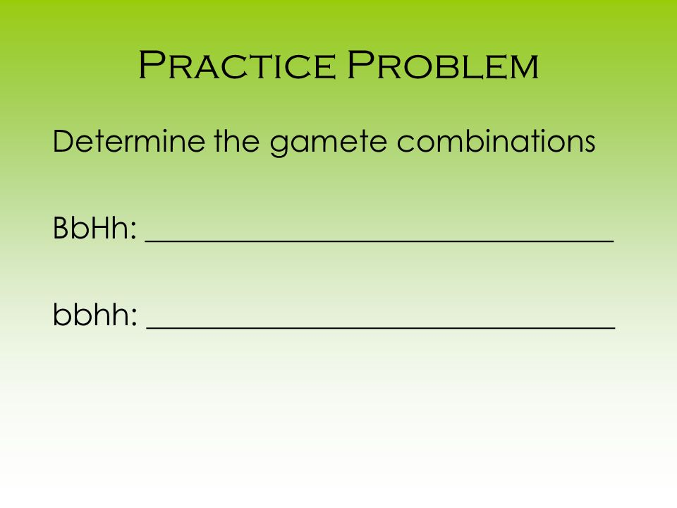 Practice Problem Determine the gamete combinations