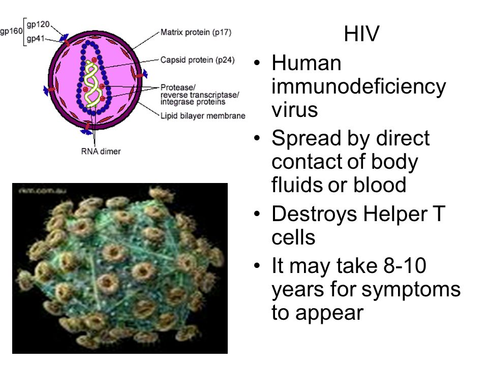HIV Human immunodeficiency virus. Spread by direct contact of body fluids or blood. Destroys Helper T cells.