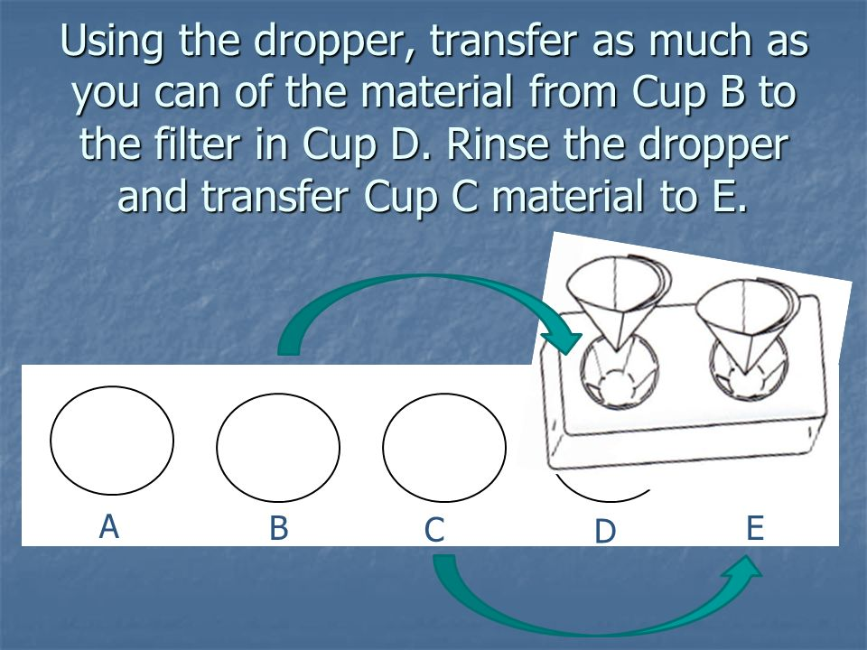 Using the dropper, transfer as much as you can of the material from Cup B to the filter in Cup D. Rinse the dropper and transfer Cup C material to E.