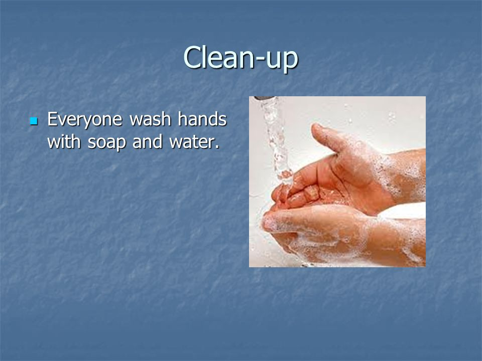 Clean-up Everyone wash hands with soap and water.
