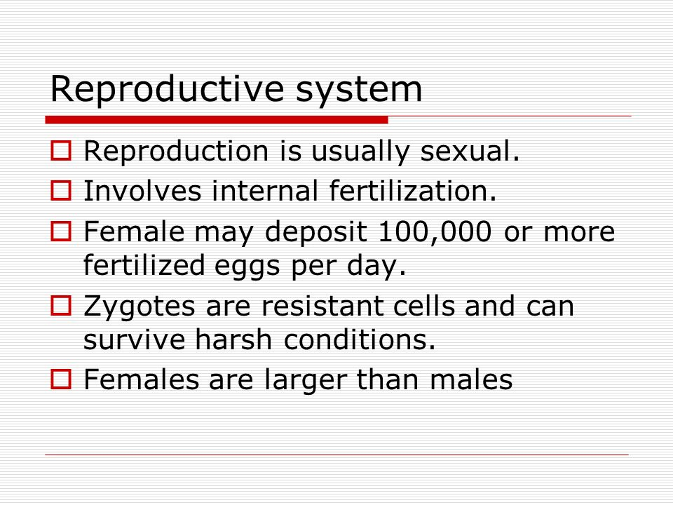 Reproductive system Reproduction is usually sexual.