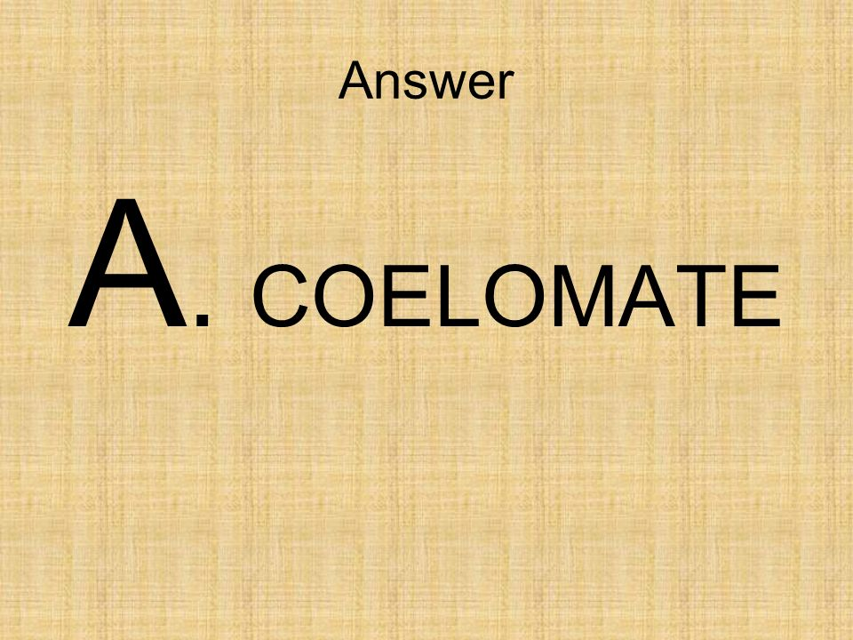 Answer A. COELOMATE