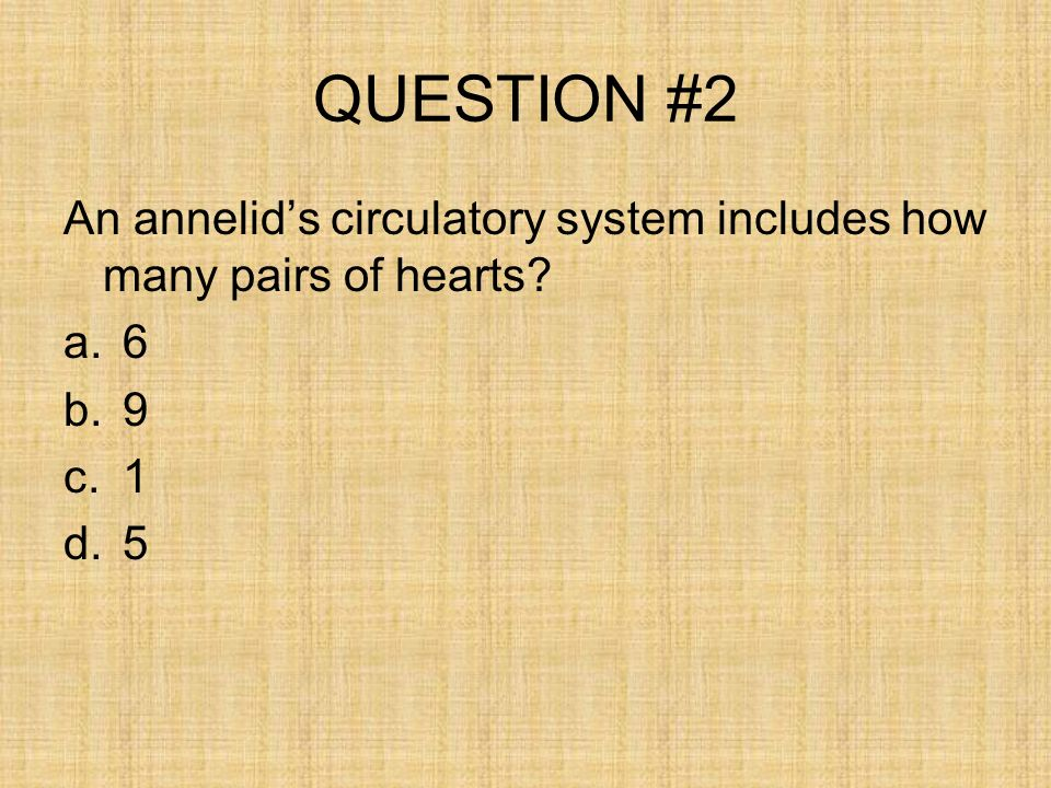 QUESTION #2 An annelid's circulatory system includes how many pairs of hearts 6 9 1 5