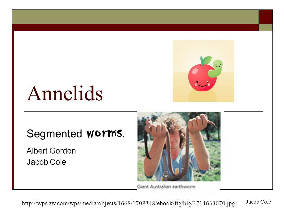 Segmented worms. Albert Gordon Jacob Cole