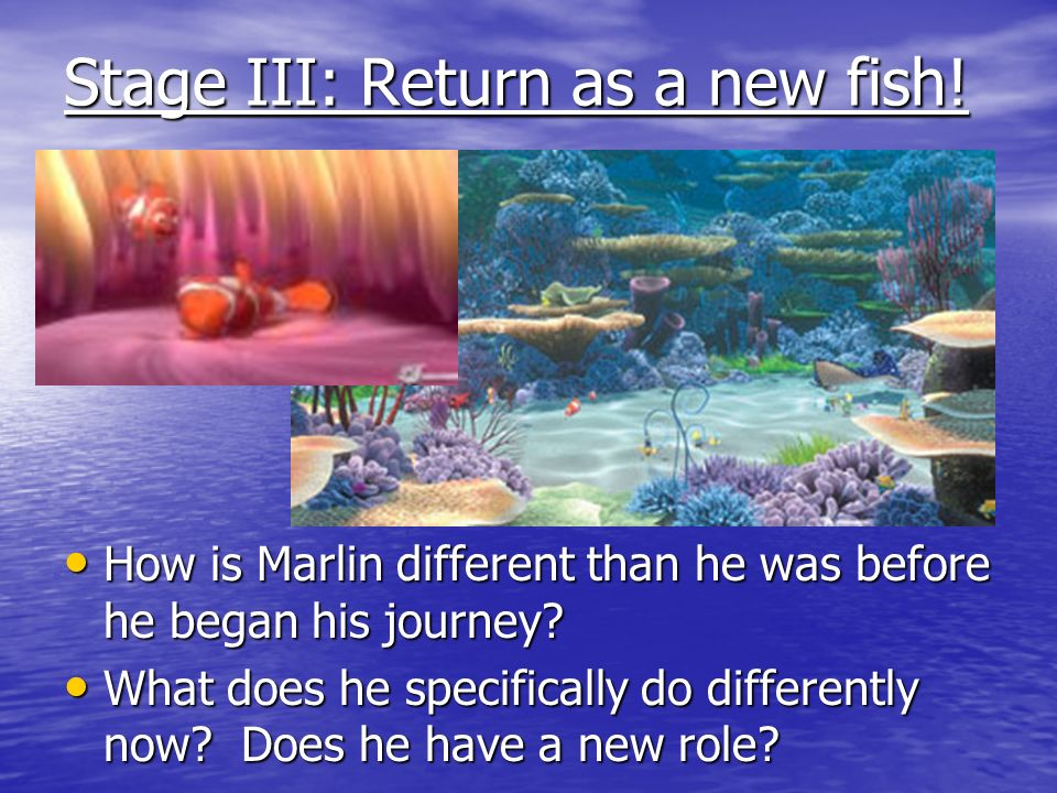 Stage III: Return as a new fish!