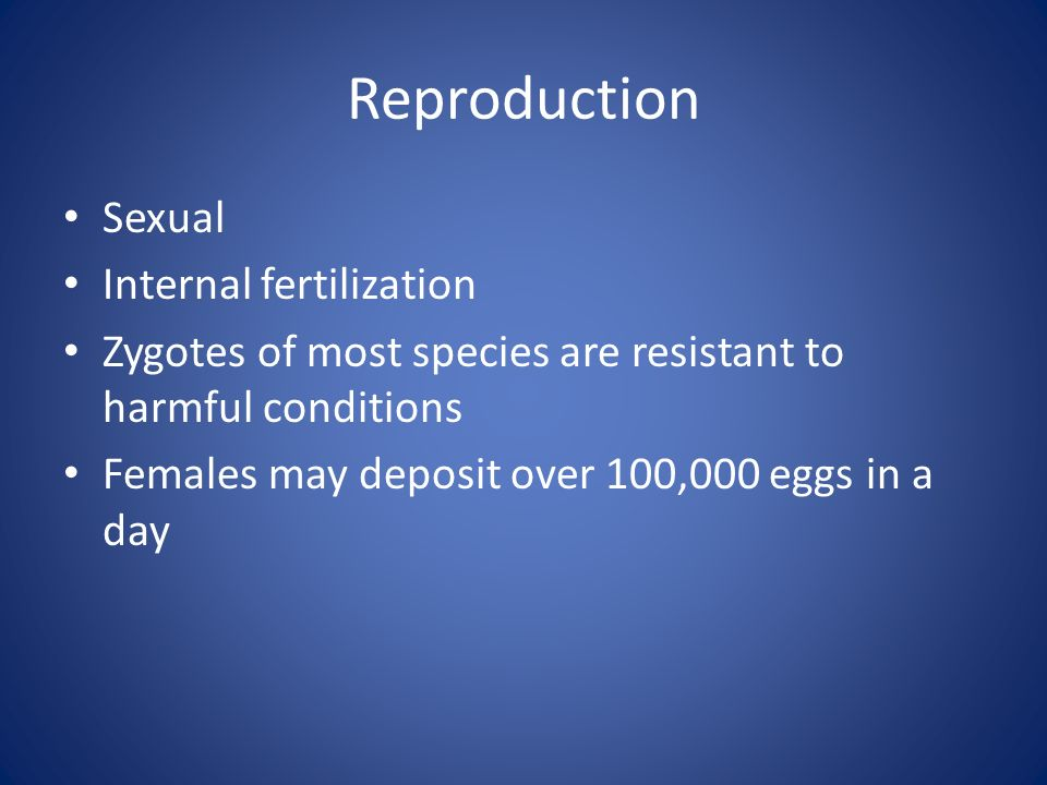 Reproduction Sexual Internal fertilization
