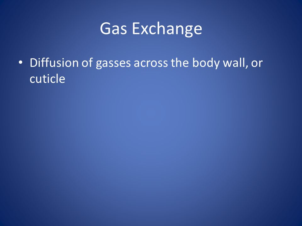 Gas Exchange Diffusion of gasses across the body wall, or cuticle