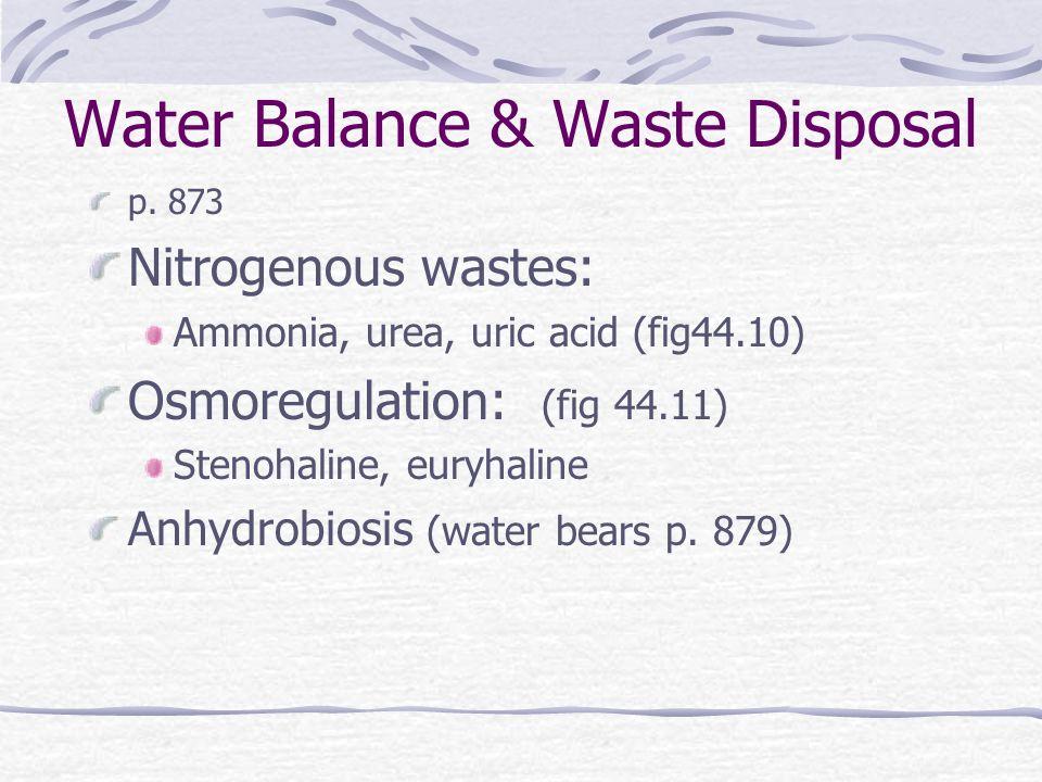 Water Balance & Waste Disposal