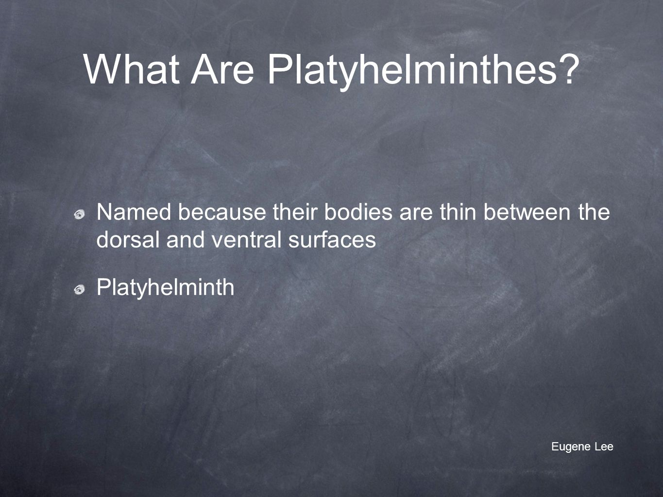 What Are Platyhelminthes