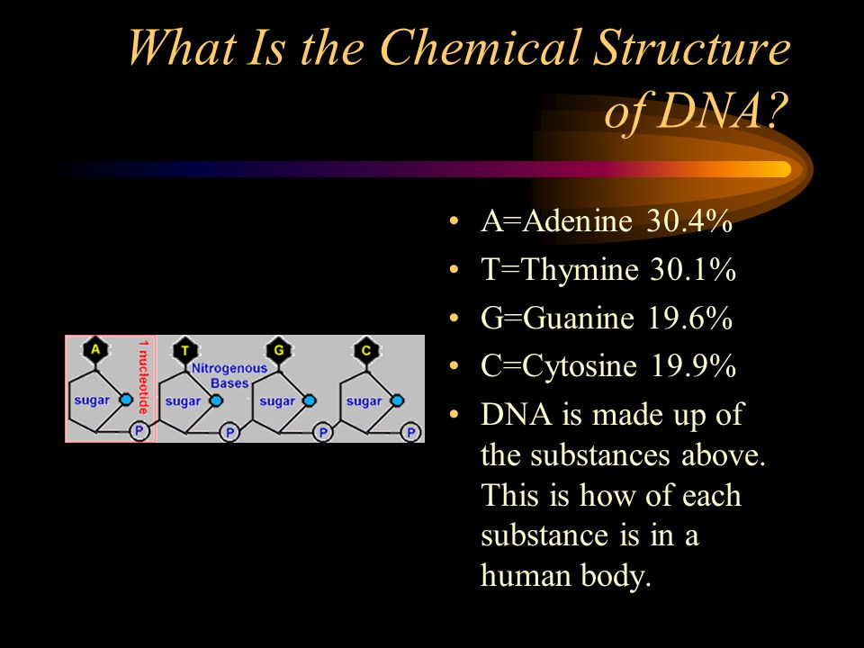 What Is the Chemical Structure of DNA