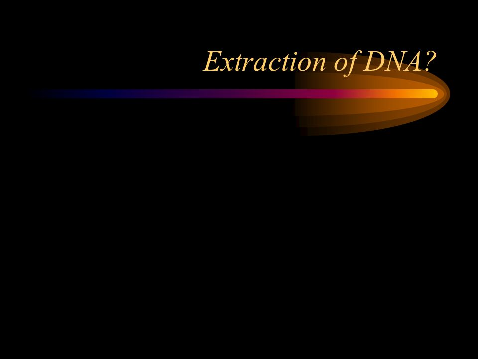 Extraction of DNA