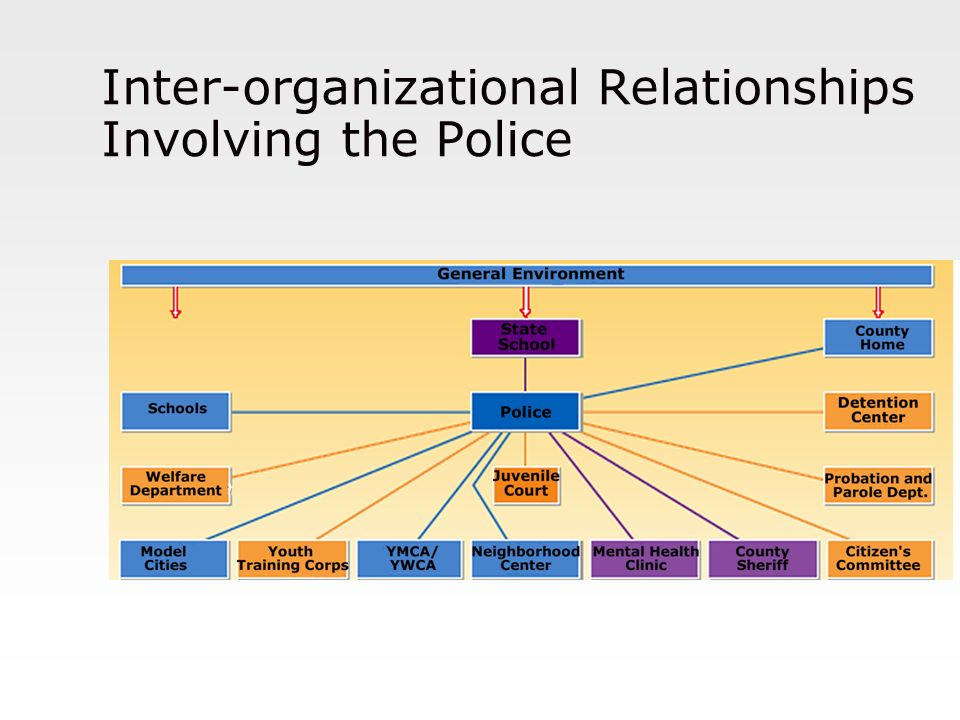 Inter-organizational Relationships Involving the Police