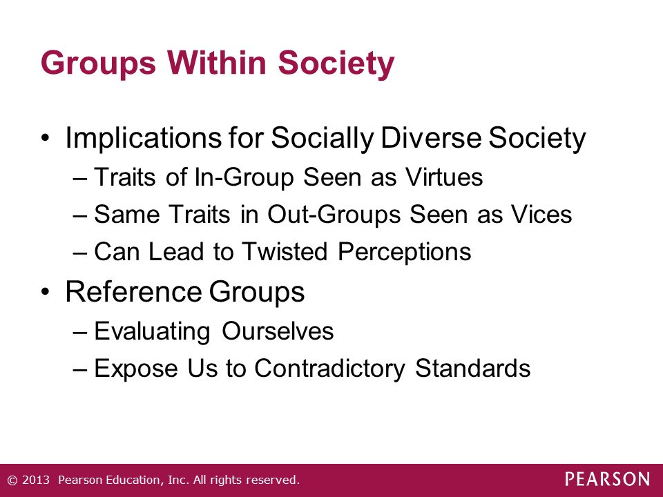 Groups Within Society Implications for Socially Diverse Society