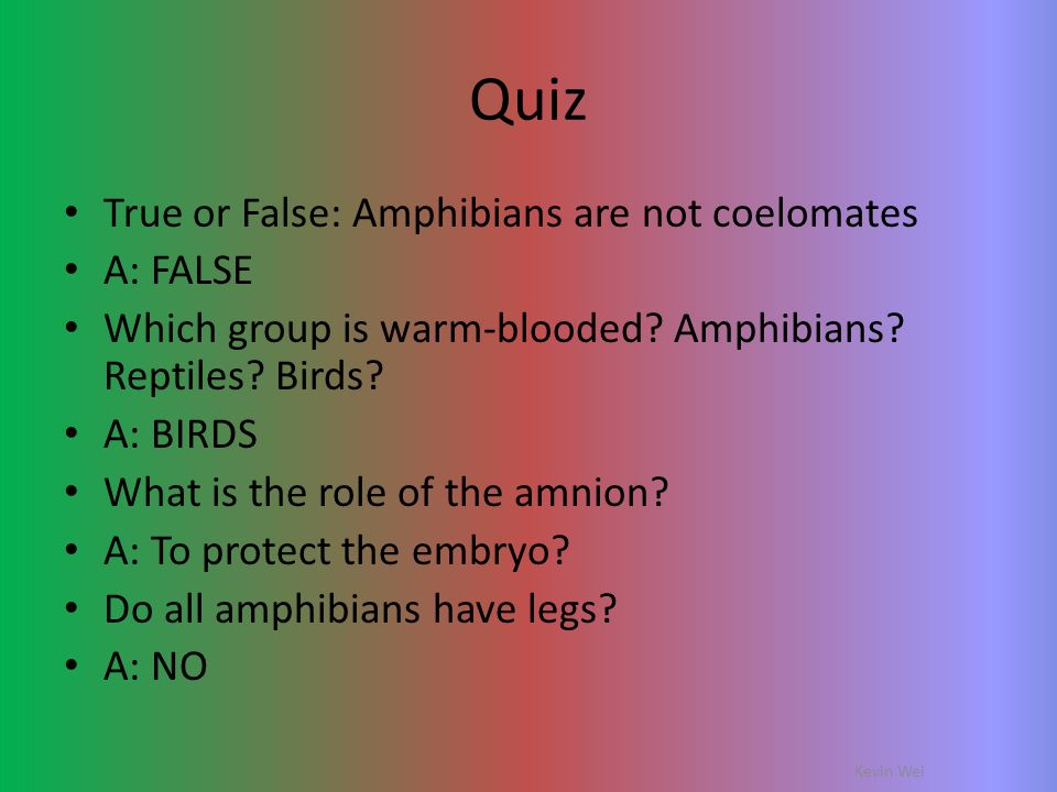 Quiz True or False: Amphibians are not coelomates A: FALSE