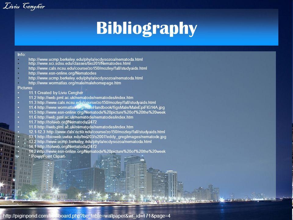 Bibliography Liviu Cengher