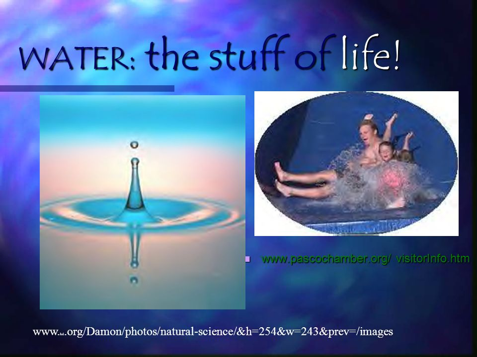 WATER: the stuff of life!