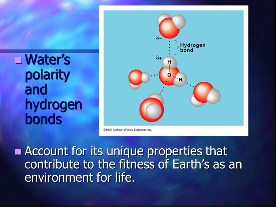 Water's polarity and hydrogen bonds