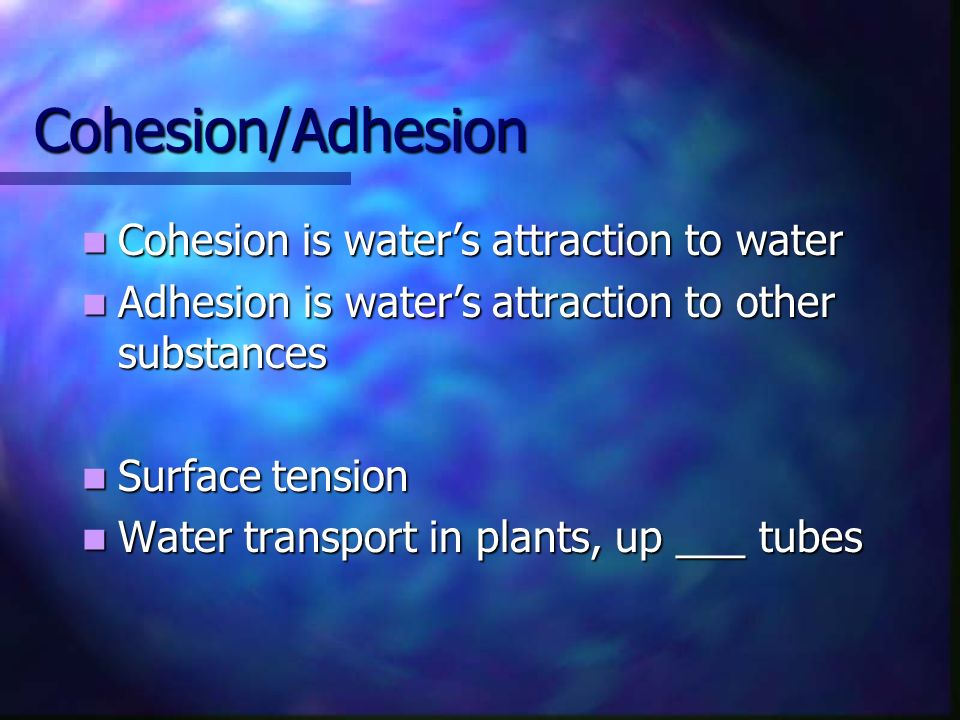 Cohesion/Adhesion Cohesion is water's attraction to water