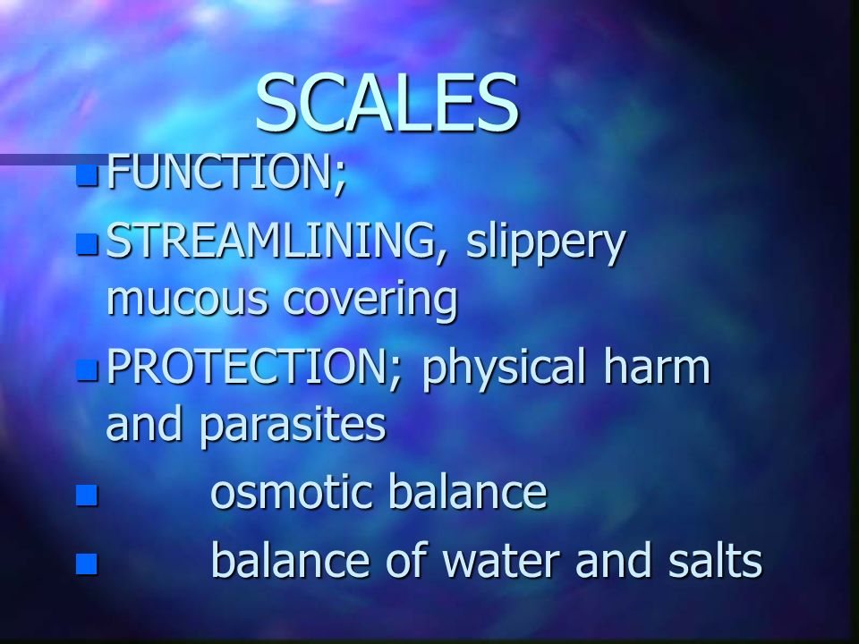 SCALES FUNCTION; STREAMLINING, slippery mucous covering
