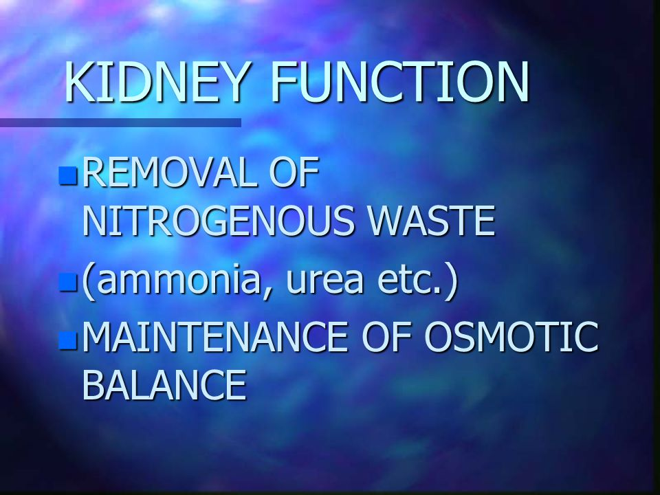 KIDNEY FUNCTION REMOVAL OF NITROGENOUS WASTE (ammonia, urea etc.)