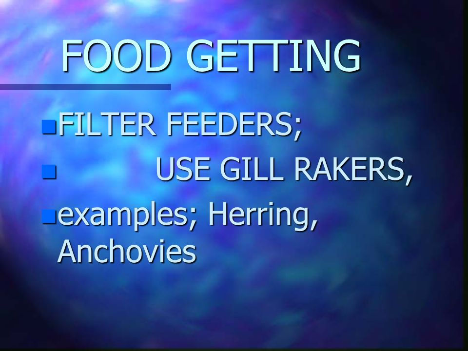 FOOD GETTING FILTER FEEDERS; USE GILL RAKERS,