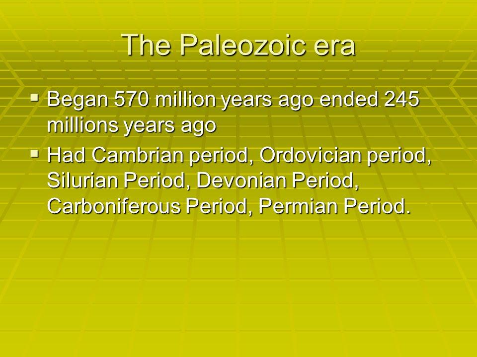 The Paleozoic era Began 570 million years ago ended 245 millions years ago.