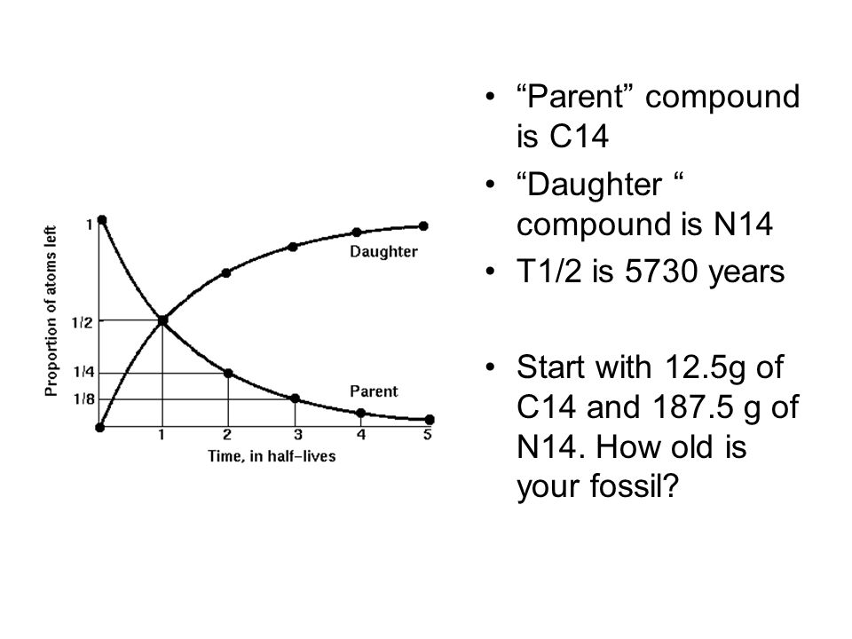 Parent compound is C14 Daughter compound is N14.