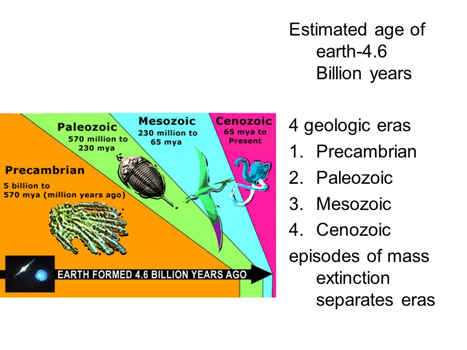 Estimated age of earth-4.6 Billion years