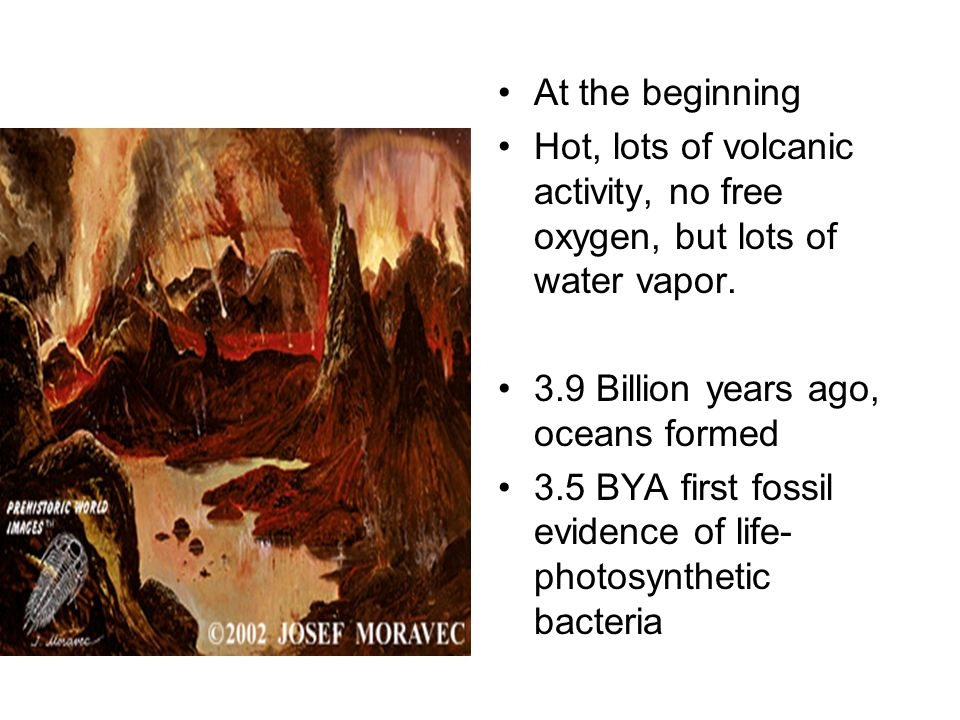 At the beginning Hot, lots of volcanic activity, no free oxygen, but lots of water vapor. 3.9 Billion years ago, oceans formed.