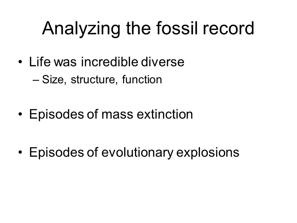 Analyzing the fossil record