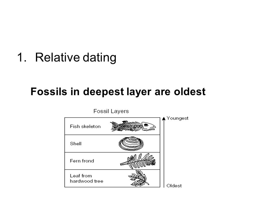 Relative dating Fossils in deepest layer are oldest
