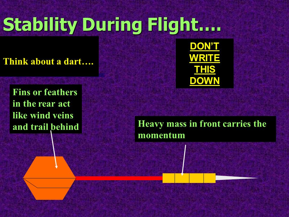 Stability During Flight….