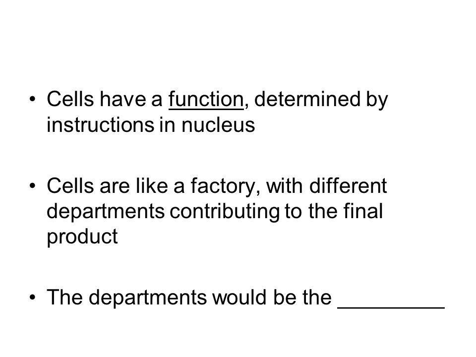 Cells have a function, determined by instructions in nucleus
