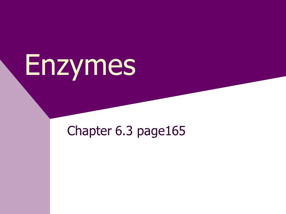 Enzymes Chapter 6.3 page165