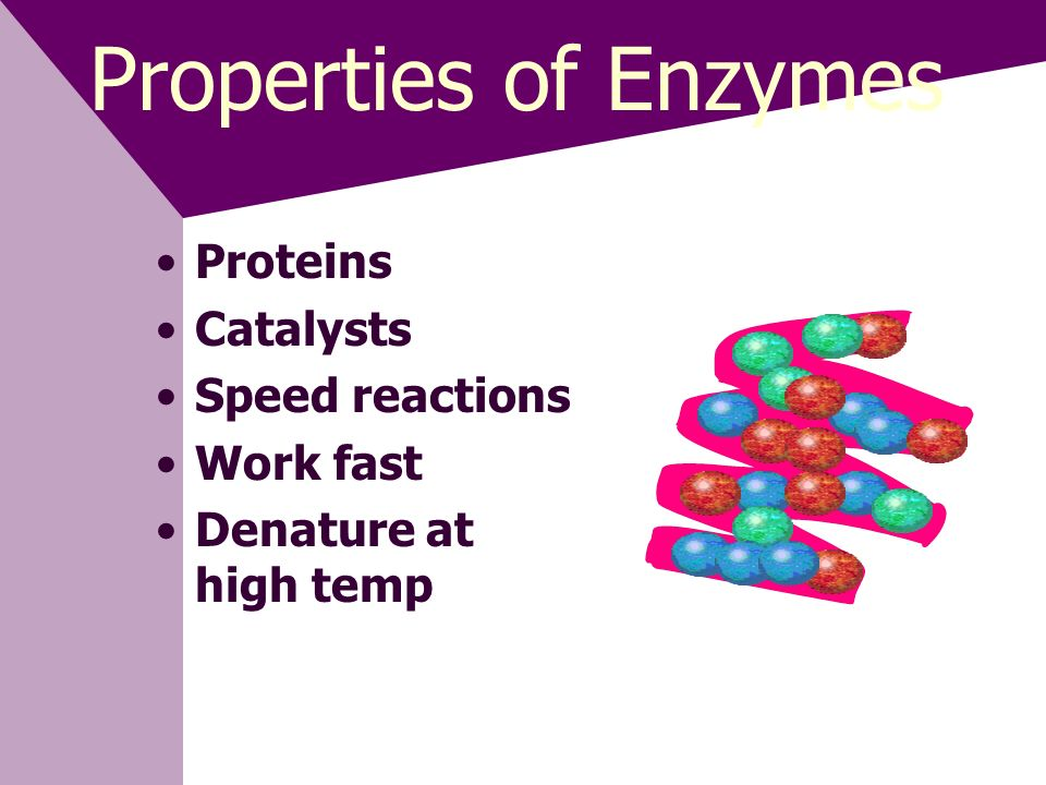 Properties of Enzymes Proteins Catalysts Speed reactions Work fast