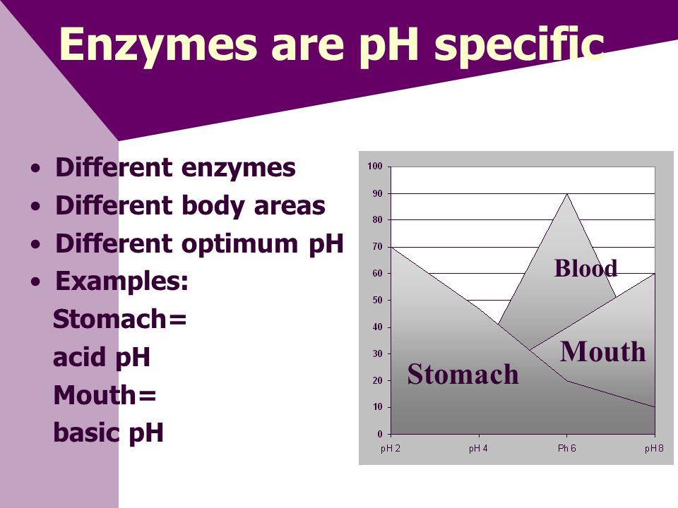 Enzymes are pH specific