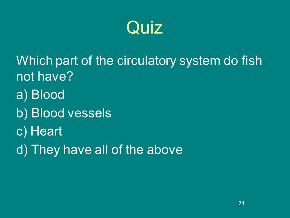 Quiz Which part of the circulatory system do fish not have a) Blood