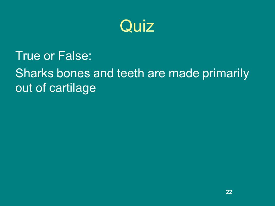 Quiz True or False: Sharks bones and teeth are made primarily out of cartilage 22