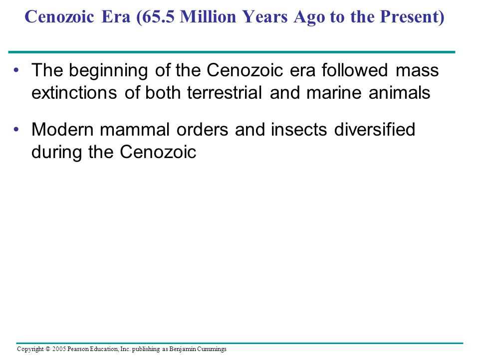 Cenozoic Era (65.5 Million Years Ago to the Present)