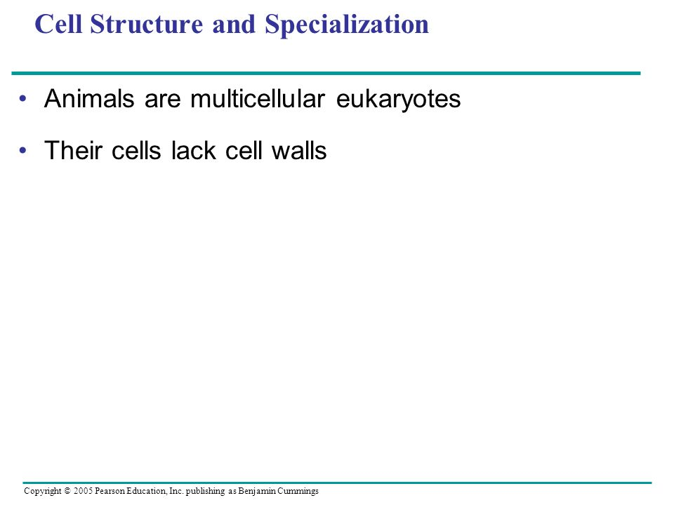 Cell Structure and Specialization