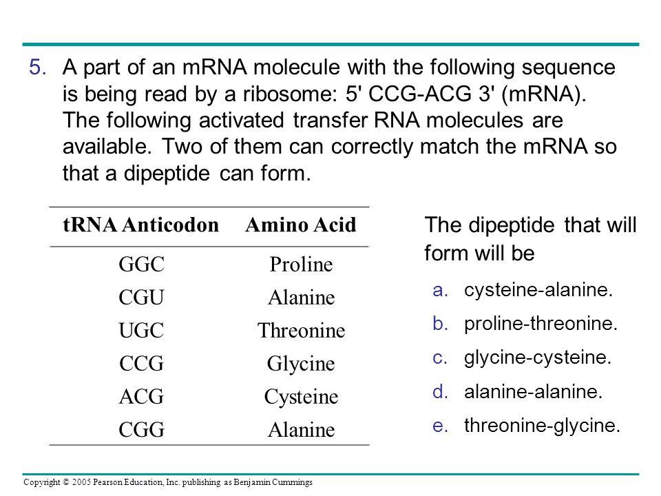 tRNA Anticodon Amino Acid