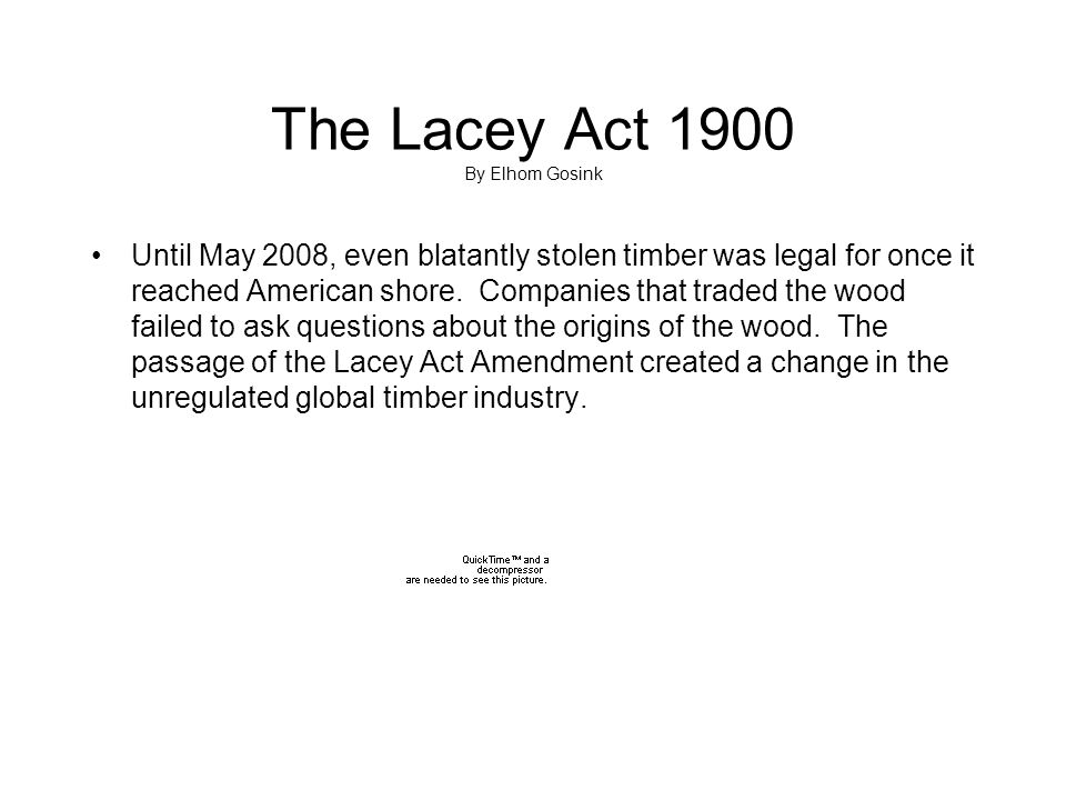 The Lacey Act 1900 By Elhom Gosink