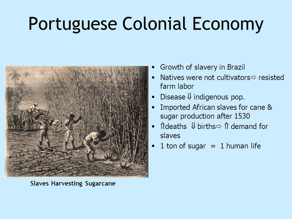 Portuguese Colonial Economy